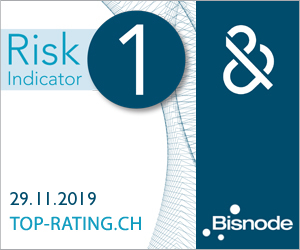 D&B Rating Certificate